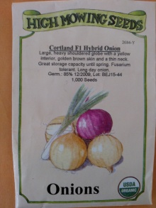 Onion 02-08-2016